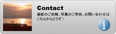 contact.html